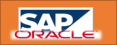 Deliverables in a Snapshot_Level 4_SAP Oracle